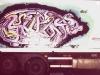 camionweb.jpg